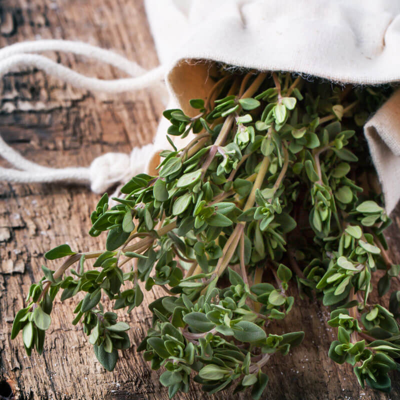 Thyme Essential Oil Uses & Healing Power