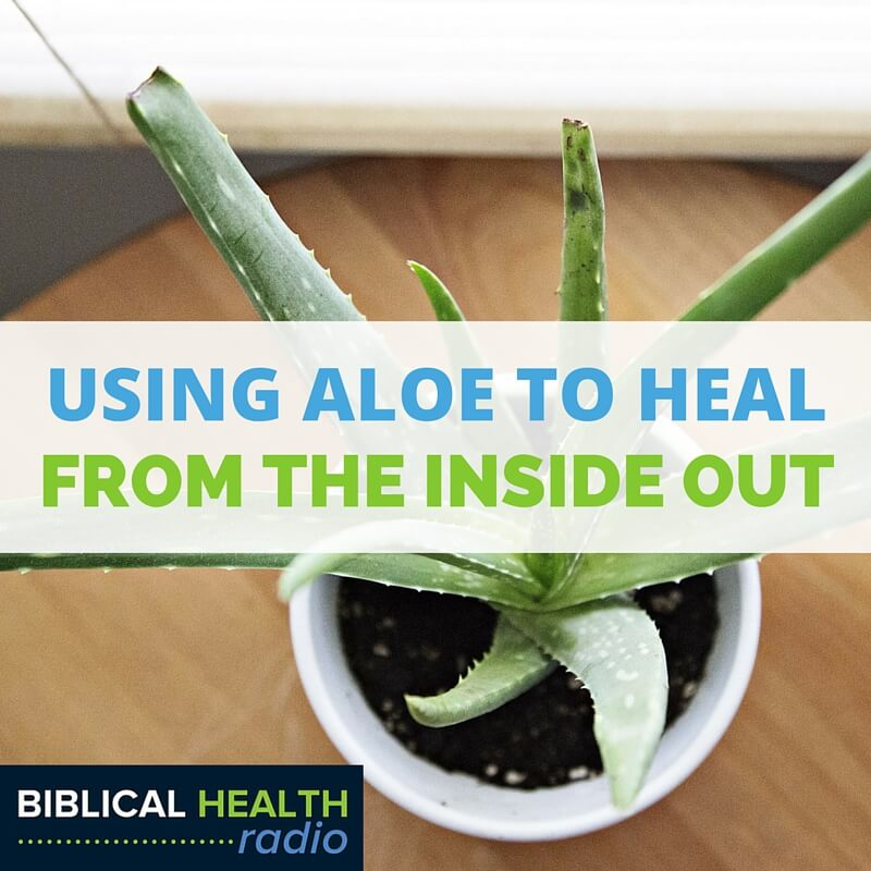 Using Aloe to Heal from the Inside Out | Episode #012