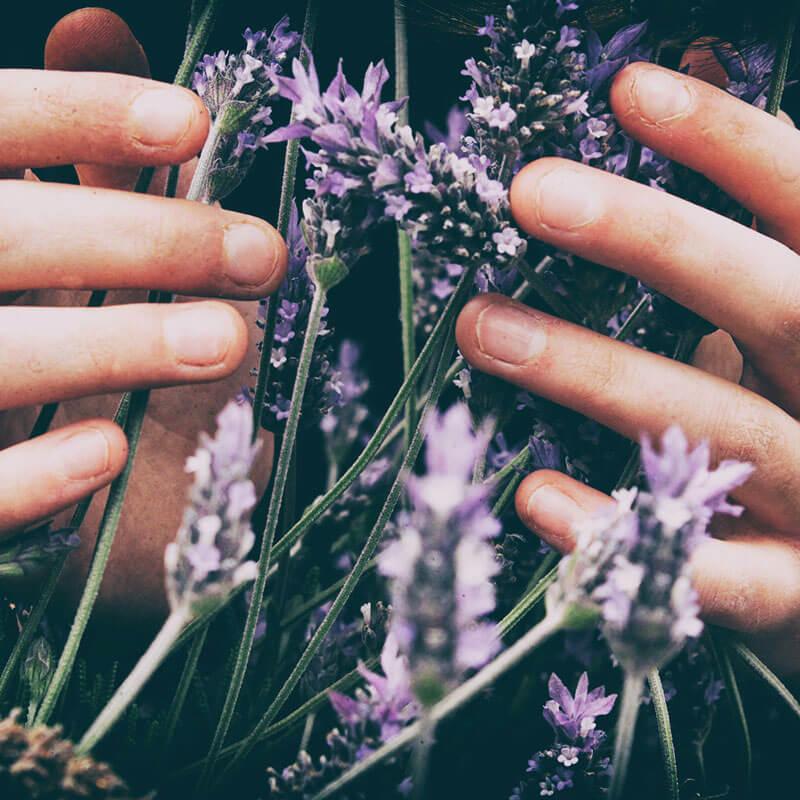 10 Essential Oils for Stress Relief