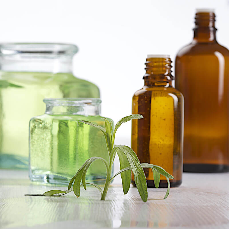 Tarragon Essential Oil: Ancient Digestive Remedy
