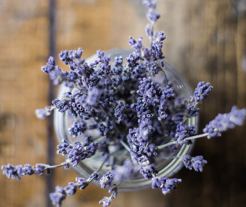 Best Essential Oils for Metabolic Syndrome