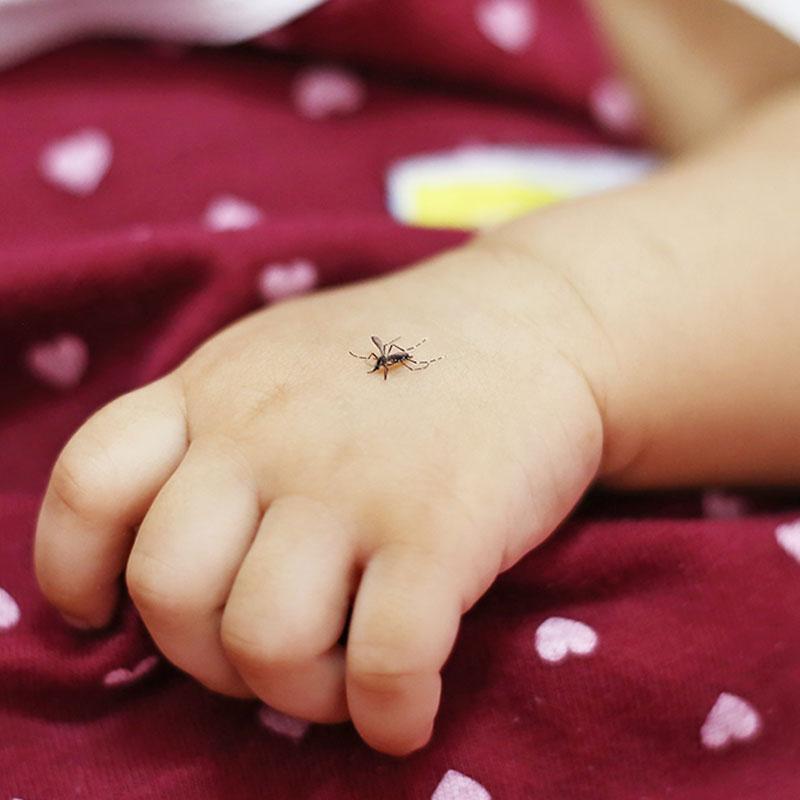 Essential Oil Mosquito Repellent Recipe