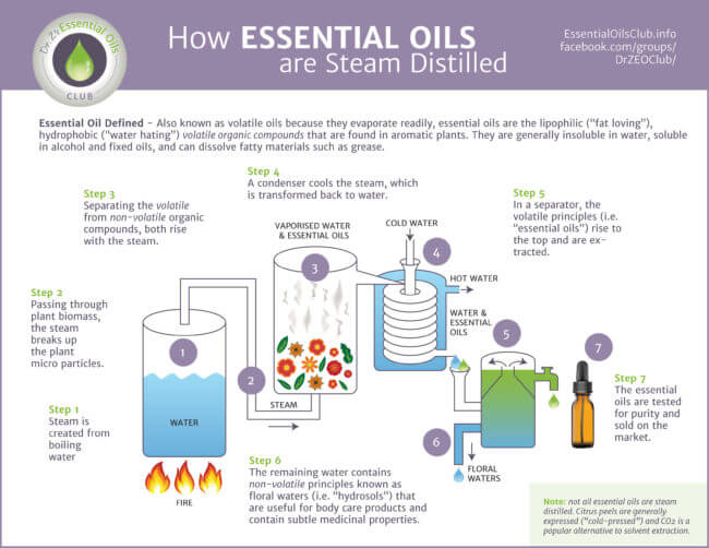Learn How To Distill Essential Oils