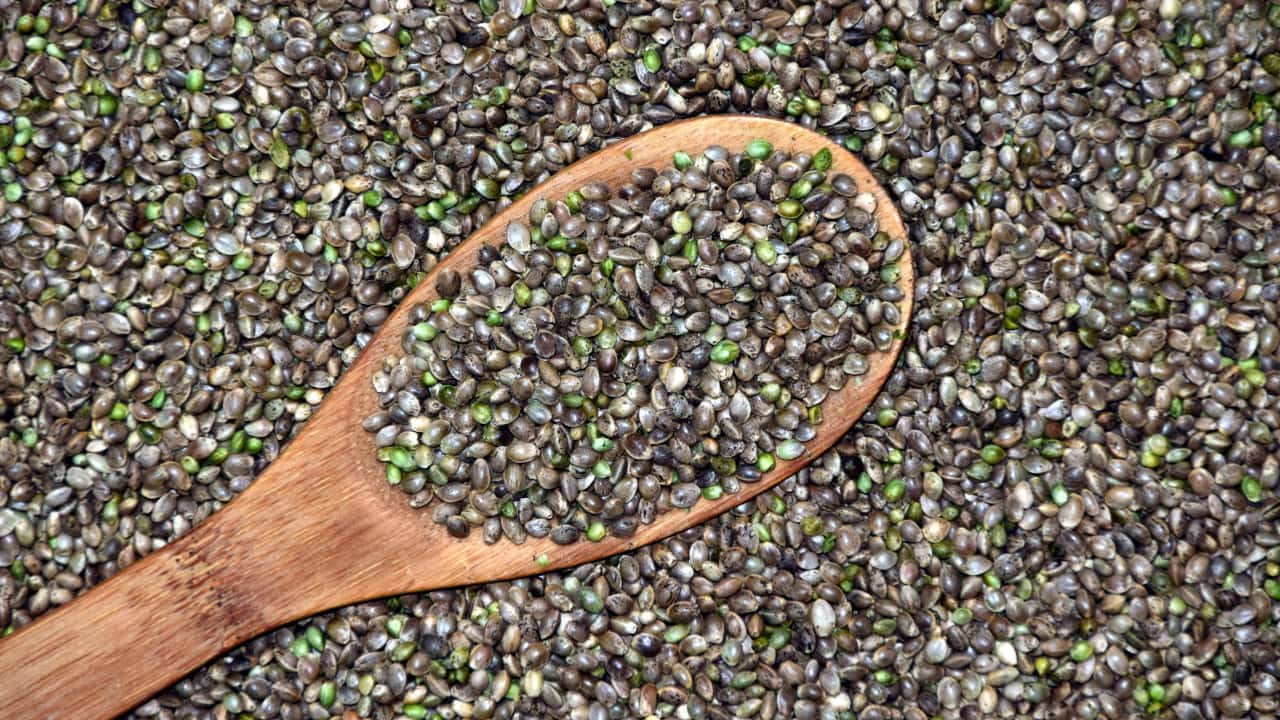 Hemp Seed Benefits that Can Change Your Life (and the Planet!)