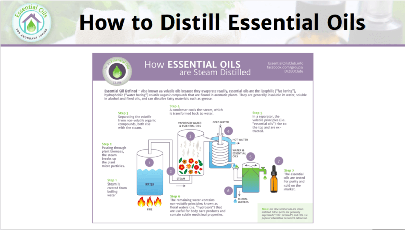 How Essential Oils are Distilled