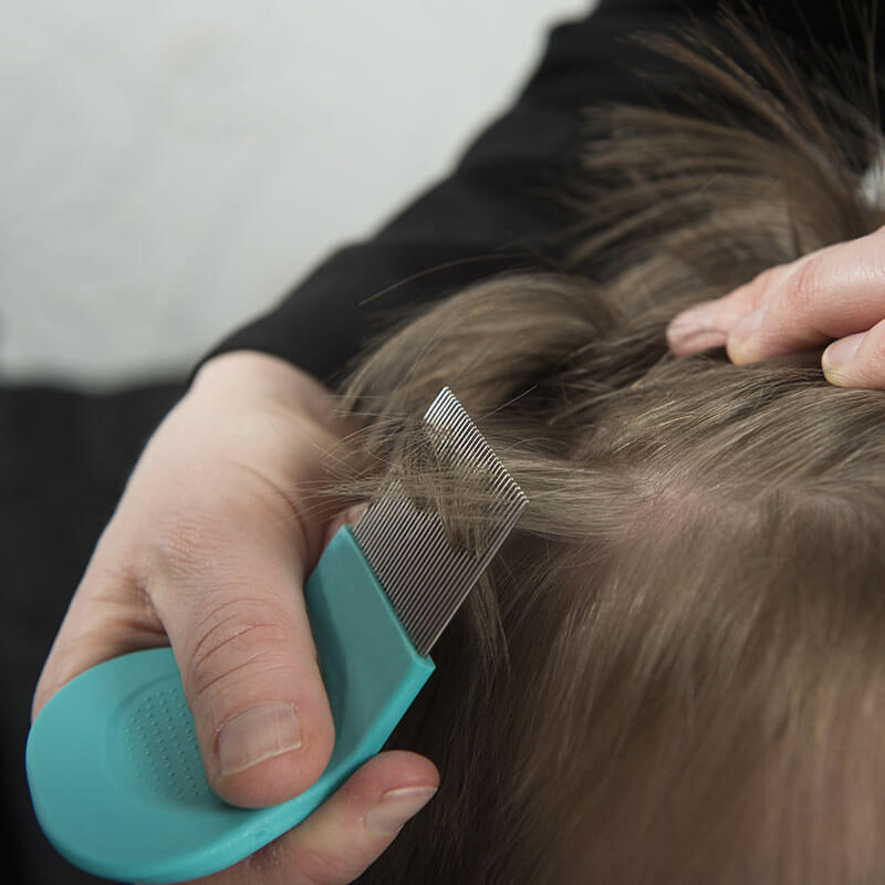 Essential Oils for Lice & Natural Hair