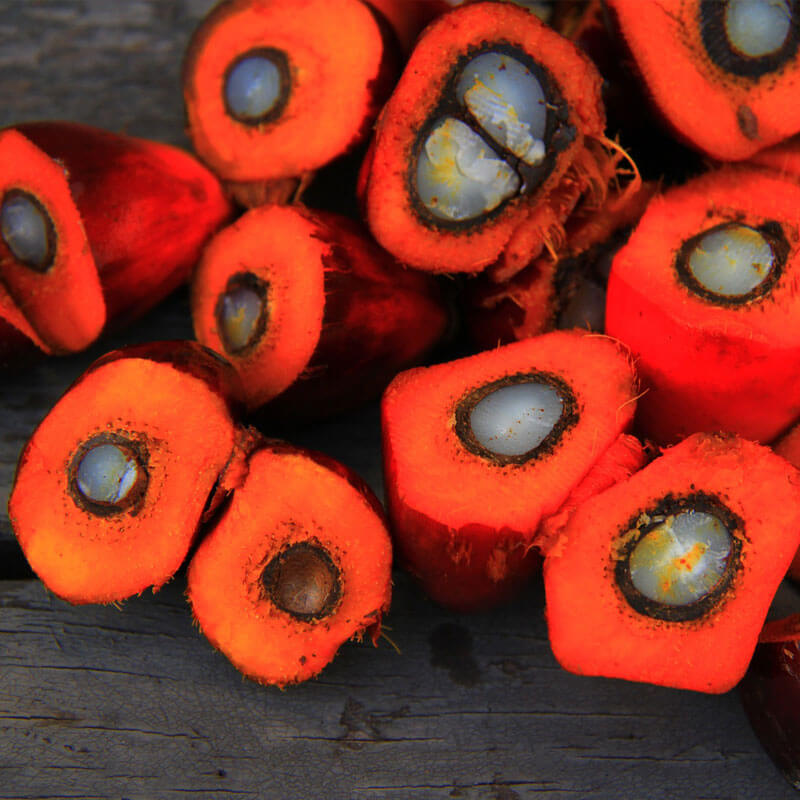 Red Palm Oil Benefits You Should Know