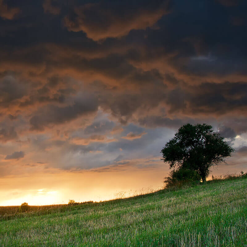 Expect the Unexpected During the Storms of Life