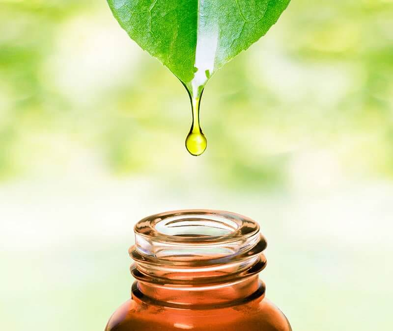 Dispersing and Diluting Essential Oils for Household Use