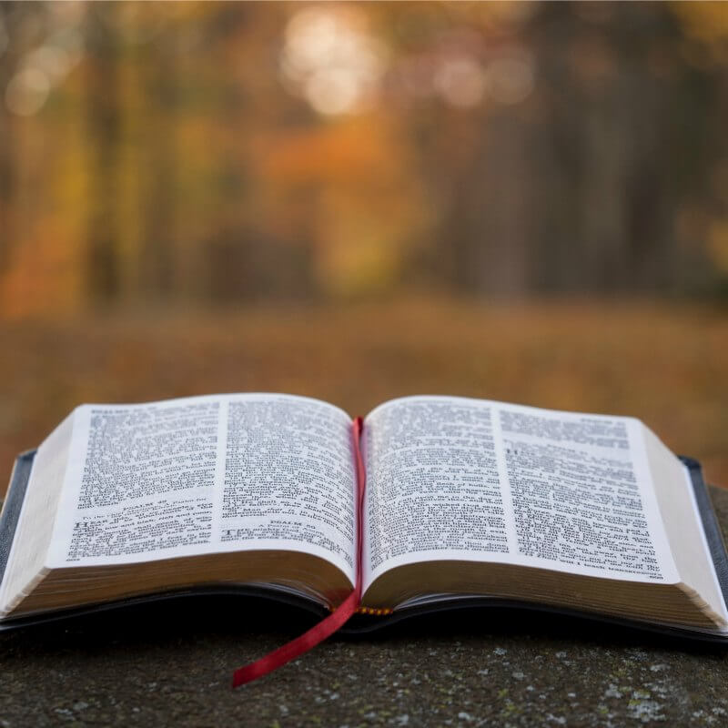 Inspirational Bible Verses and Images From the Old Testament