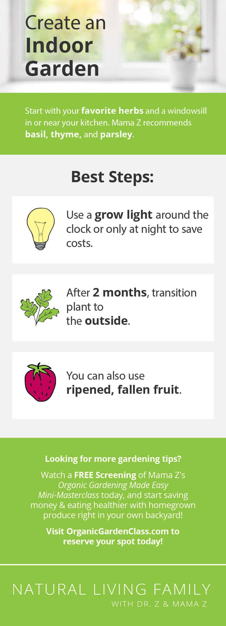 How to Grow Herbs - How to Create an Indoor Garden