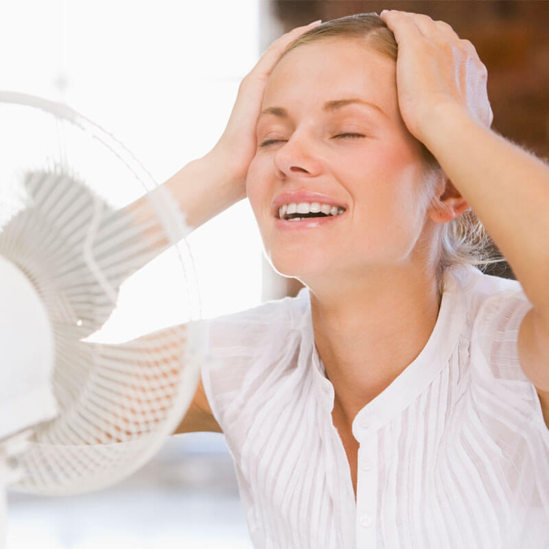 Natural Remedies for Hot Flashes and Insomnia