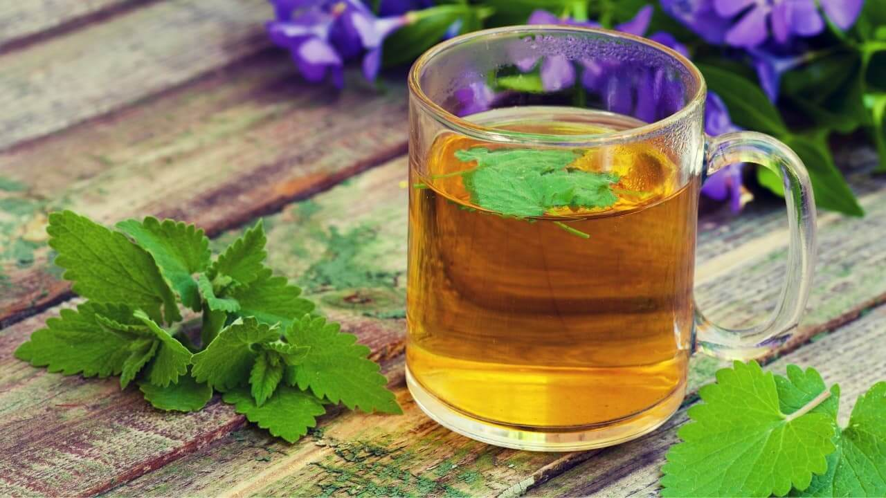 How to Make Homemade Tea from Your Own Garden