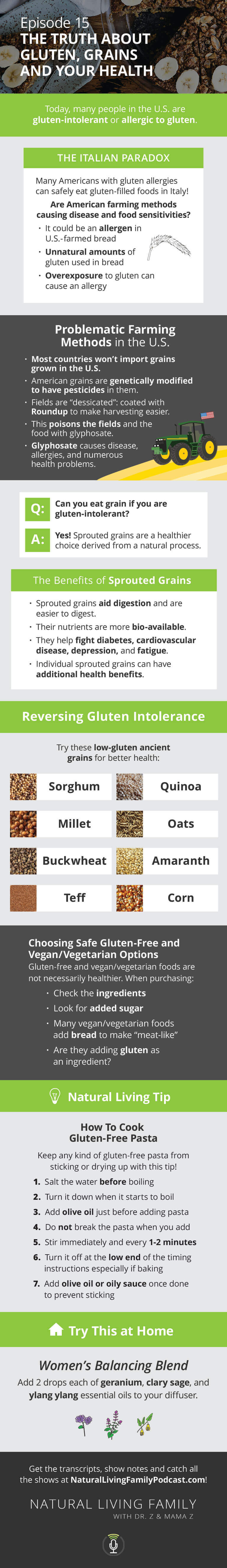 Truth About Grains Yes, You Can Have Your Gluten-Free Cake and Eat It, Too! Podcast Episode 15 Infographic