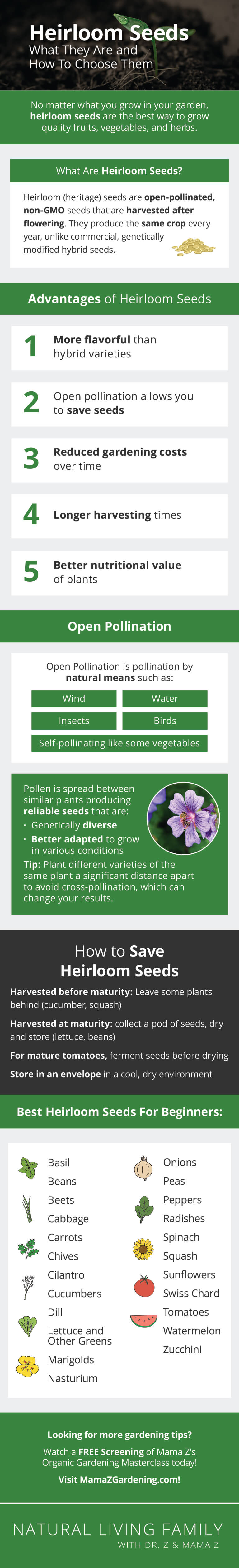 What are Heirloom Seeds? Best Heritage and Organic Garden Seeds Infographic