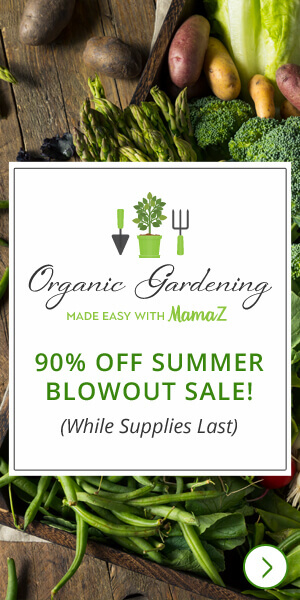 Organic Gardening Class with Mama Z Summer Sale