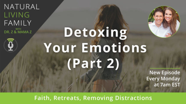 Detoxing Your Emotions, Part 2 Faith, Retreats, Removing Distractions - Podcast Episode 29