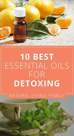 Best Essential Oils for Detoxing