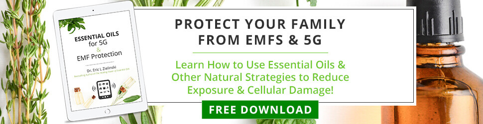 Protect Your Family From EMFs & 5G - FREE DOWNLOAD